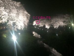 nogawa_lightup
